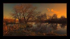 April evening | evening, water, tree, grass