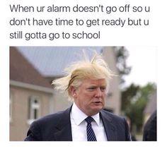 Trump hairdos happenings