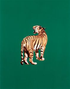 artexpansion:Sarah Charlesworth, Tiger