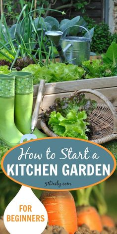 Kitchen gardening isn't difficult. It doesn't even require a lot of space. In fact, it doesn't even require a yard. You can just as easily garden in containers as you can in raised beds or in the ground. With some simple tips to get started, you can be well on your way to ripe and juicy fruits and veggies that you planted yourself.  IHere are some easy steps to create a healthy and productive garden!  How to Start a Kitchen Garden for Beginners | 31Daily.com