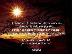 La Vida, Chaplin