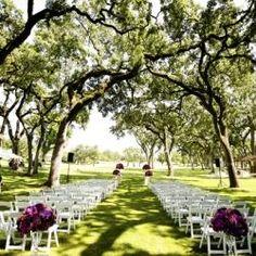 Luxurious Napa Wedding in Purple