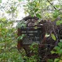 Walt Disney World - Rediscovering River Country