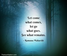 """Let come what comes, let go what goes.  See what remains."" - Ramana Maharshi"