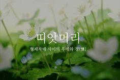 이쁜 우리말들 짤모음 - BADA.TV Ver 3.0 :: 해외 거주 한인 네트워크 - 바다 건너 이야기 Fonts Quotes, Wise Quotes, Message Quotes, Learn Korean, Typography, Lettering, Korean Language, Proverbs, Cool Words