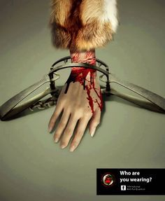 i really detest poeple who wear fur,go & found out how your fur coat was made..