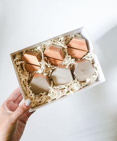 Hexagon Place Card Holders by esselle SF. Champagne silver on dark wood anyone? We've just added this beautiful color to our color options!   Place Card | Place Cards | Place Card Holder | Place Card Holders | Place Card Ideas | Place Card Favors | Place Card Wedding | Wedding Place Cards | Wedding Place Card Holders | Unique Place Cards | Creative Place Cards | Modern Place Cards | Modern Place Card Holders | Wood Place Card | Wooden Place Card Holder | Wooden Place Card Holders Modern Place Card Holders, Card Table Wedding, Wedding Place Cards, Photography Packaging, Holiday Tables, Dark Wood, Champagne, Card Ideas, Favors