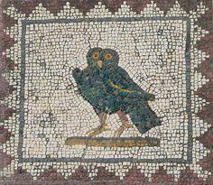 Roman Mysteries & Western Mysteries: Animals in Pompeii & Herculaneum