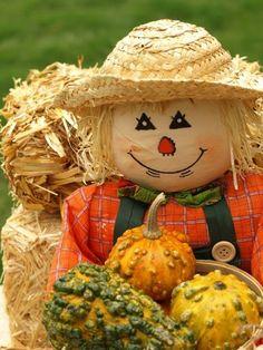 country garden scarecrow
