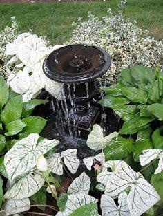 Love the coleus, hosta and shrubs around fountain Monkey Grass, Diy Water Fountain, Diy Water Feature, Garden Fountains, Water Fountains, Garden Art, Garden Ideas, Dream Garden, Garden Inspiration
