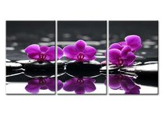 Amazon.com: Canvas Print Wall Art Painting For Home Decor Blooming Butterfly Orchid Flowers On Black Spa Stones Still Life Of Zen Stones With Tropical Phalaenopsis 3 Pieces Panel Paintings Modern Giclee Stretched And Framed Artwork The Picture For Living Room Decoration Flower Pictures Photo Prints On Canvas: Oil Paintings