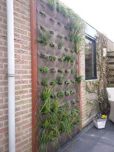 Verticaal tuinieren met de vertiplant Single, met schaduw planten  www.vertiplant.nl
