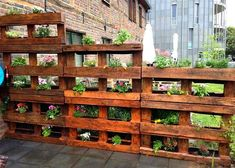 Modern Wooden Pallet Fences Pallet Planter- would love this for the bunnies in the backyard. Could put lettuce in them on the lower level!Pallet Planter- would love this for the bunnies in the backyard. Could put lettuce in them on the lower level! Vertical Pallet Garden, Wood Pallet Planters, Pallets Garden, Vertical Gardens, Wood Pallet Fence, Pallet Gardening, Organic Gardening, Fence Stain, Garden Ideas With Pallets
