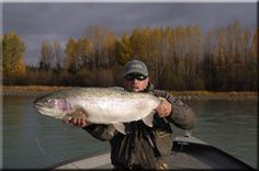 Alaska Fishing for Trophy Kenai Rainbow Trout.