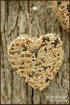 Cookie Cutter Bird Seed Bird Feeders %u2013 making for Z%u2019s class for Valentines Day