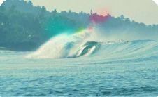 Soul & Surf Camp, Kerala/India
