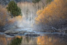 Fall photography tips to overcome technical challenges and avoid some common mistakes from pro photographer Charlotte Gibb. Nature Photography Tips, Autumn Photography, Amazing Photography, Landscape Photographers, Early Morning, Waterfall, Vibrant Colors, Charlotte, Summer