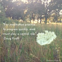 """For meditation to progress quickly, ease must play a central role."" -Doug Kraft"