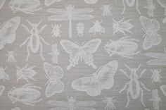 Bichos Butterfly Insect Feather Beige Curtain / Craft / Upholstery Fabric - 100% Cotton - Per 1/2 Metre