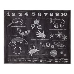 Kids Decals: Science Numbers Wall Decal in All Wall Art | The Land of Nod