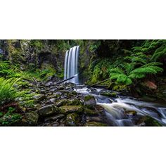 The beautiful Hopetoun Falls in Otway National Park Victoria Australia.  It just rained the previous night so the falls were full of water and there was a lot of movement to capture.  An absolutely stunning location which is a must visit if youre down the Great Ocean Road.  by goldseas