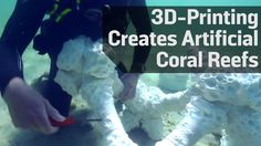 3D-Printing Creates Artificial Coral Reefs