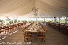 Bliss Events   Amanda Lachapelle