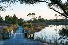 Camp Helen State Park | SoWal.com - Insider's Guide for South Walton Beaches & Scenic 30A