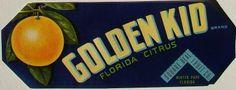 3.25X9 GOLDEN KID, Vintage Winter Park, Florida Citrus Crate Label