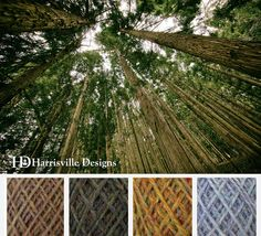 'Arbor Day' color palette featuring our flyWHEEL yarn: Meadows, Spoonwood, Eastview, and Birch Bark.