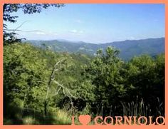 I love #Corniolo #San #Paolo #in #Alpe: meraviglioso!