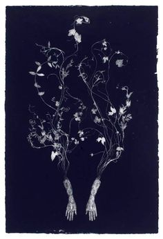 Lithographic Print by Valerie Hammond. Image © Valerie Hammond