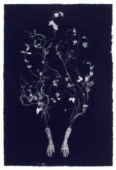 Lithographic Print by Valerie Hammond. Image © Valerie Hammond