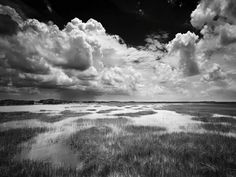 Clyde Butcher - Black and White Fine Art Photographer Black And White Clouds, Black N White Images, Black White, Blue Angels Air Show, Ghost Orchid, Online Gallery, Ciel, Black And White Photography, Fine Art Photography