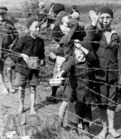 Najlepsze Obrazy Na Tablicy Rok Sendlerowej 8 Zweiter Weltkrieg
