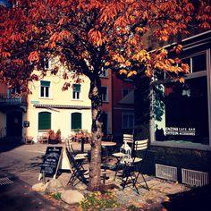 autum feeling Coffee Shops, Café Bar, Barista, Swiss Guard, Amazing, Coffee Shop, Baristas