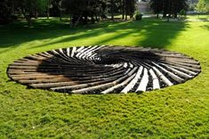 """Chris Drury's """"Carbon Sink"""", University of Wyoming. Metaphor for the destruction of forests by pine beetles due to climate change."""