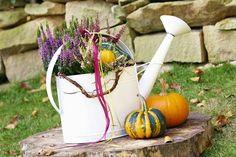 Mehrfarbige Callunen in eine Gießkanne gepflanzt, dekoriert mit Zweigen, Bändern und Zierkürbissen halten sich lange als Herbstdekoration.