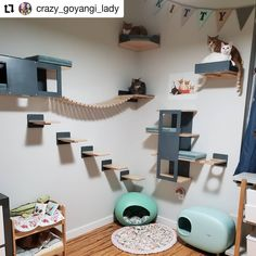 Modern Pet Furniture for Cats & Rabbits made by Scratchy Things. Handmade pet furniture with modern design and extensive customization options for your cat, rabbit, bunny, guinea pig. Cat Wall Furniture, Cat Wall Shelves, Cat House Diy, Cat Bedroom, Animal Room, Room Decor, House Design, Pets, Cattery