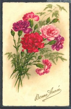 PH126-Bonne-Annee-New-Year-OEILLETS-CARNATIONS-Fine-LITHO-PITTIUS