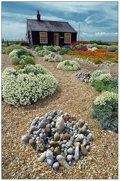 Derek Jarman's garden / Dungeness // Green Home. (Orange mounds of flowers in edged by river rock or in planter for front expanse or front planter or side area) Backyard Garden Landscape, Gravel Garden, Modern Backyard, Large Backyard, Garden Landscaping, Fun Backyard, Garden Pond, Garden Planters, Garden Tips