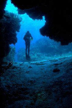 64  A scuba diver in Cozumel
