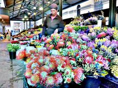 Cape Town flower market an hour from Franschhoek Beaches In The World, Countries Of The World, African Love, Xhosa, Out Of Africa, Dream City, Most Beautiful Beaches, Flower Market, Travel Planner