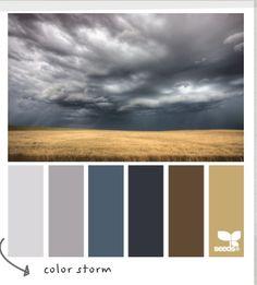Bedroom colors -- Walls grey. Accents Blue, Furniture Brown -- Frames B&Ws???