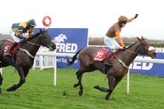 The Becher Chase at Aintree is always one of the pre-Christmas highlights on the National Hunt calendar as punters and fans of the sport get their first chance of the season to see the legendary Gr… Horse Racing, Riding Helmets, Horses, World, Sports, Animals, Hs Sports, Animales, Animaux