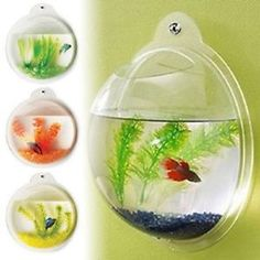Poisson-mural-bol-aquarium-wall-hanging-tank-plante-decoration-bulle-bol