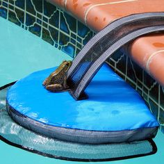 7 Amazing Pool Products You Didn't Know Existed #Pools #SwimmingPools #Blog #PoolBlog