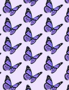 aesthetic purple pastel sweet soft art coral tropical minimalism summer self care flower sweet lavender lilac butterfly wallpaper Purple Butterfly Wallpaper, Butterfly Background, Purple Wallpaper Iphone, Iphone Background Wallpaper, Purple Backgrounds, Dark Purple Aesthetic, Violet Aesthetic, Lavender Aesthetic, Aesthetic Women