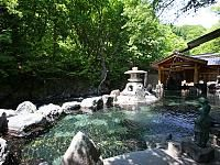 Go to this website for a list of Japanese hot springs (onsen): List of hot springs