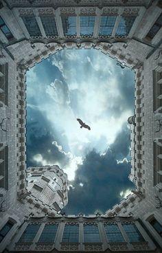 Fly above me | La Beℓℓe ℳystère